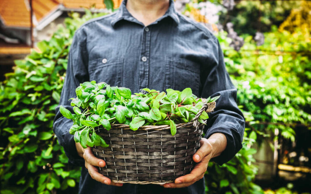 Don't Just Network, Become a Relationship Gardener
